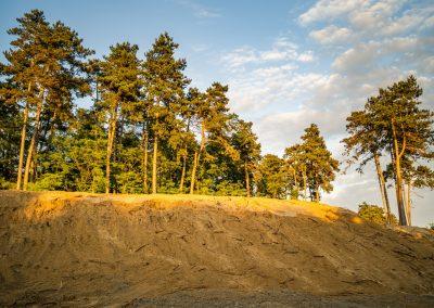 Pješčana dina kod šume Borik